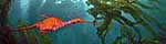 Click to see Gallery SEADRAGON